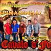 Imagem - 2194969 - Banda Cavalo De Fogo